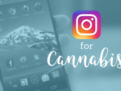 Creating Instagram Content for your Dispensary