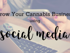 How to Grow Your Cannabis Business Using Social Media