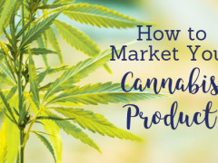 How to Market Your Cannabis Company in a Competitive Market