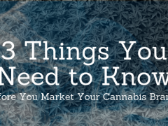 3 Things You Need to Know Before Marketing Your Cannabis Products