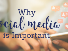 Why Social Media is Important for Your Cannabis Brand